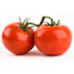 Tomato- Round (MX) Main Image