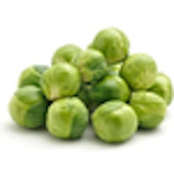 Sprout- Brussels (CA) Main Image
