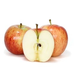 Apple- Cameo (WA) Main Image