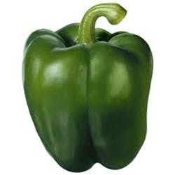 Green Bell Pepper Main Image