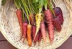 Monroe Family Organics