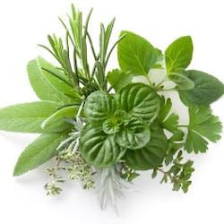Herbs & Seasonings Shop Category Image