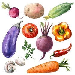 Vegetables Shop Category Image