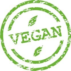 Raw Vegan Healthy Snacks Shop Category Image