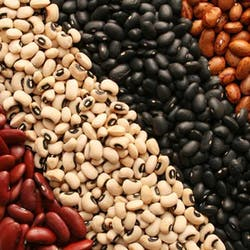 Beans Shop Category Image