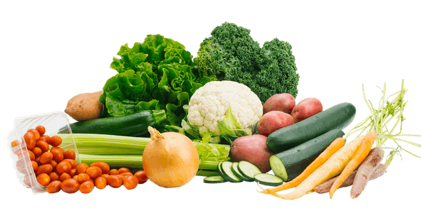 All Vegetable