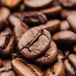 Coffee Shop Category Image