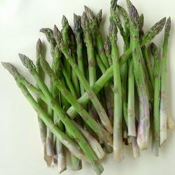 Asparagus (MX) Main Image