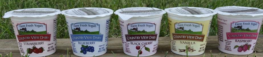 Yogurt Shop Category